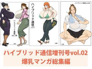hybrid tsuushin zoukangou vol 02 cover