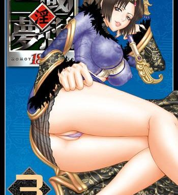 in sangoku musou 3 cover 1